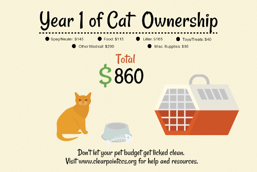 cost of cat ownership